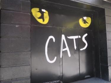 cats_7
