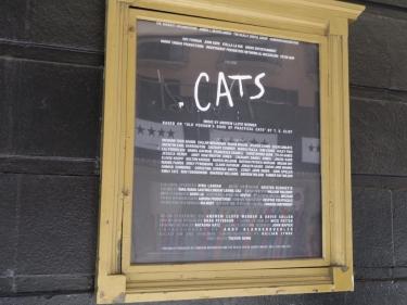 cats_8