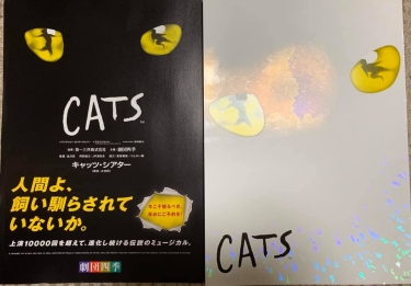 CATS_01